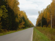 Ð¡ountry road in the autumn stock images