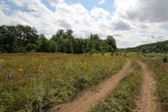 Ountry väg för Ð-¡ i fälten Arkivfoto