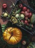 Сountryside photographer flatlay top view fall autumn stock photo