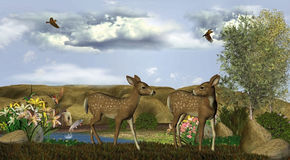 Our deer adventure Royalty Free Stock Photo