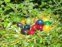 Our Easter eggs in 2014 stock photos