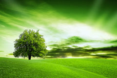 Our Green Planet Royalty Free Stock Photo