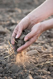 Our soil turning into dust Royalty Free Stock Images