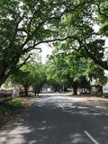 Our village Road seeing awsome moment s stock photo
