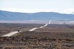 On our way to Death Valley,. A typical USA desert road royalty free stock photography
