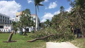 Ouragan du sud Irma Damage de Miami de plage banque de vidéos