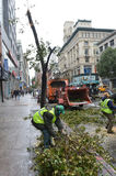 Ouragan Sandy Photos libres de droits