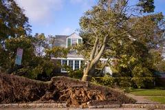 Ouragan Sandy image libre de droits