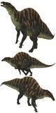 Ouranosaurus Royalty Free Stock Image
