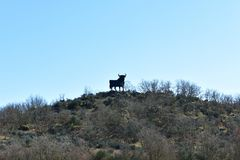 Traditional bull road sign on a hill. Spain. stock photography