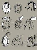 Ouriços cinzentos Fotografia de Stock Royalty Free