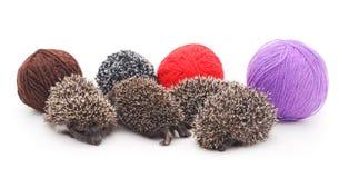 Ouriços e bolas pequenos da pele imagem de stock royalty free