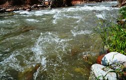 Ourika River stock photo