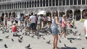 Ourists with pigeons in Venice Stock Images