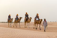 Tourists ride on camels guided by a local man, in the Sahara desert, Tunisia, Africa stock photography