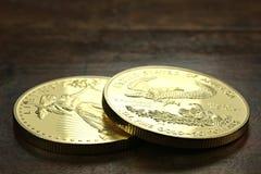 Ouro americano Eagle Fotografia de Stock Royalty Free