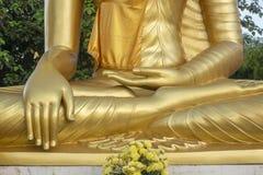 Ouro, céu, buddha, flor, árvore Imagens de Stock Royalty Free
