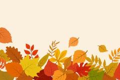 Ouro caído e folhas de outono vermelhas Fundo do sumário do vetor da natureza de outubro com beira da folha ilustração stock