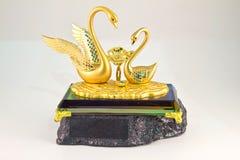 Ouro das cisnes imagem de stock royalty free