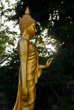 Ouro de China da Buda em um fundo azul imagem de stock royalty free