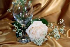Ouro de Rosa Imagem de Stock Royalty Free