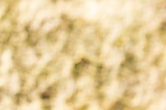 Ouro do borrão Imagem de Stock