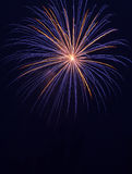 Ouro e fogos-de-artifício azuis Imagens de Stock Royalty Free
