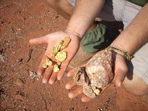 Ouro natural nas mãos Imagem de Stock Royalty Free