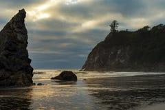 Ouro pacífico da praia Imagem de Stock Royalty Free