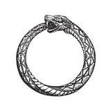Ouroboros Serpiente que come su propia cola Símbolo de la eternidad o del infinito stock de ilustración