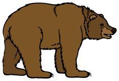 ours Image libre de droits