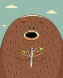 Ours avec le bouleau images stock