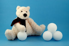 Ours blanc avec des boules de neige Photographie stock