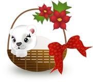 Ours blanc dans le panier Photo stock