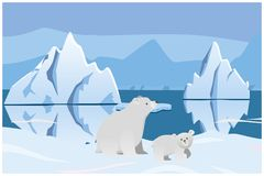 Ours blanc et ours Paysage arctique avec des icebergs Image stock