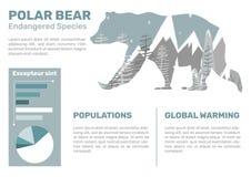 Ours blanc Infographic illustration libre de droits