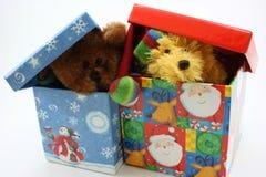 Ours bourrés faisant une pointe ensemble hors des cadres de cadeau Photos libres de droits