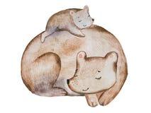 Ours brun de bande dessinée mignonne et petit petit animal s'étendant sur son dos dormant réuni avec la technique d'aquarelle Images stock