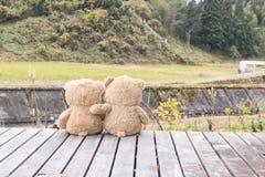 Ours brun de deux nounours se reposant sur la terrasse en bois Photographie stock libre de droits