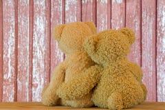 Ours bruns mignons se reposant sur le bois s'étreignant avec brouillé Photo stock