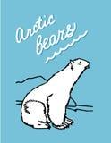 Ours d'Arctique Photo libre de droits