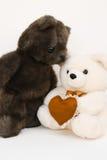 Ours dans l'amour Images libres de droits
