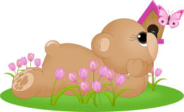 Ours dans l'herbe avec le papillon illustration libre de droits