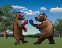 Ours de boxe Photo libre de droits