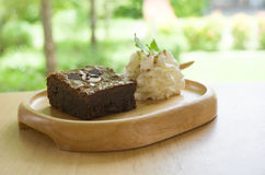 Ours de 'brownie' photo stock