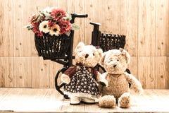 Ours de couples Image stock