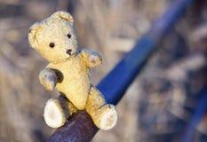 Ours de jouet - concept d'espoir Images libres de droits