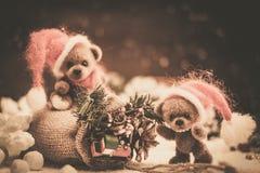 Ours de jouet dans de Noël toujours la vie Photo libre de droits