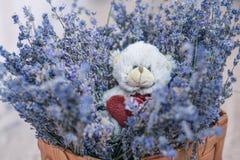 Ours de lavande et de jouet dans le panier Image stock