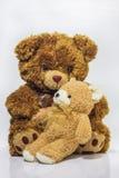 Ours de mère avec des petits animaux Photos stock